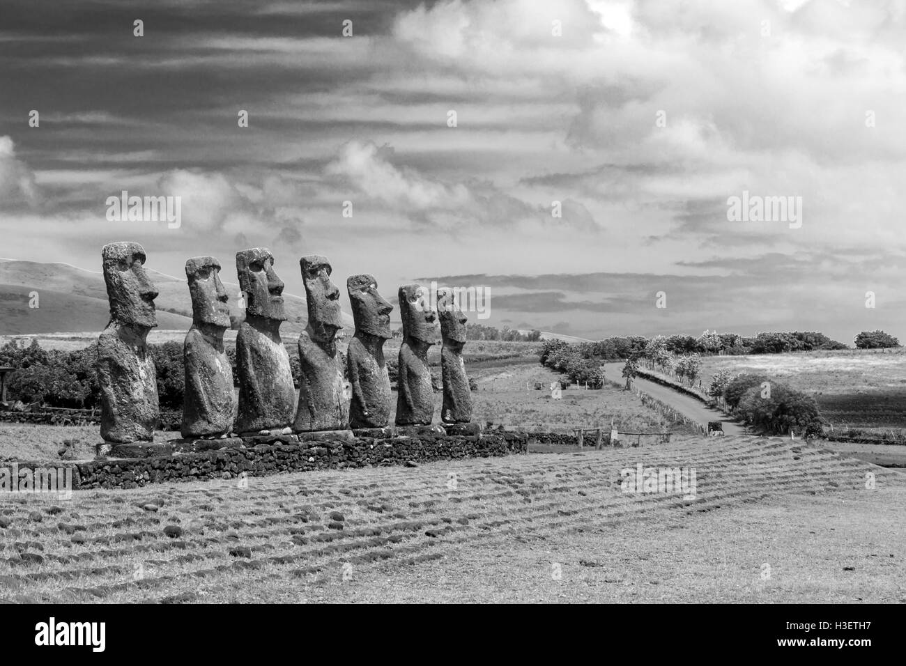 Black and white photo of moai statues at Ahu Akivi on Easter Island in Chile - Stock Image