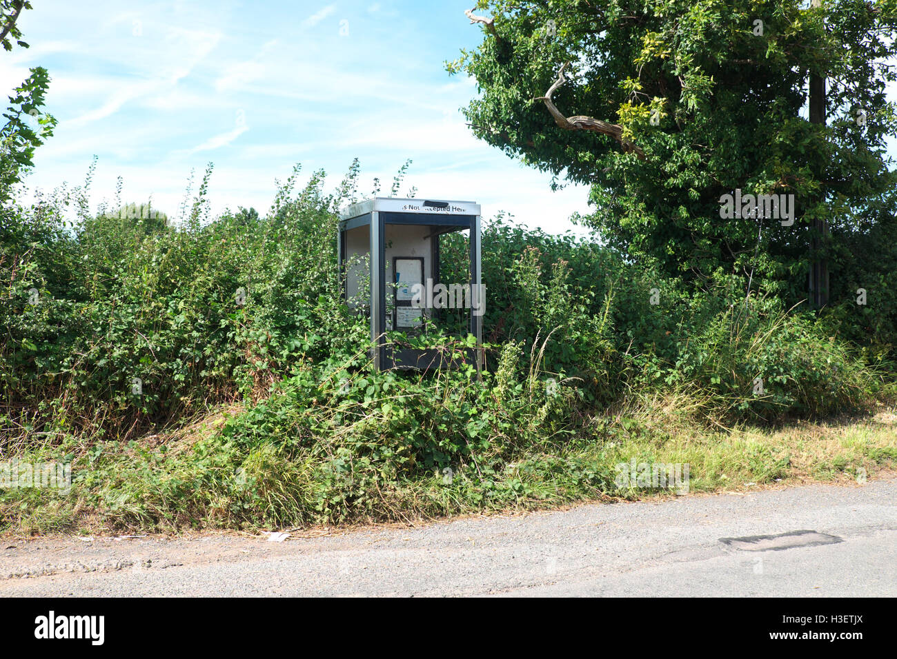 British Telecom BT neglected public phone box smashed glass and overgrown with brambles BT rural phone service Herefordshire - Stock Image
