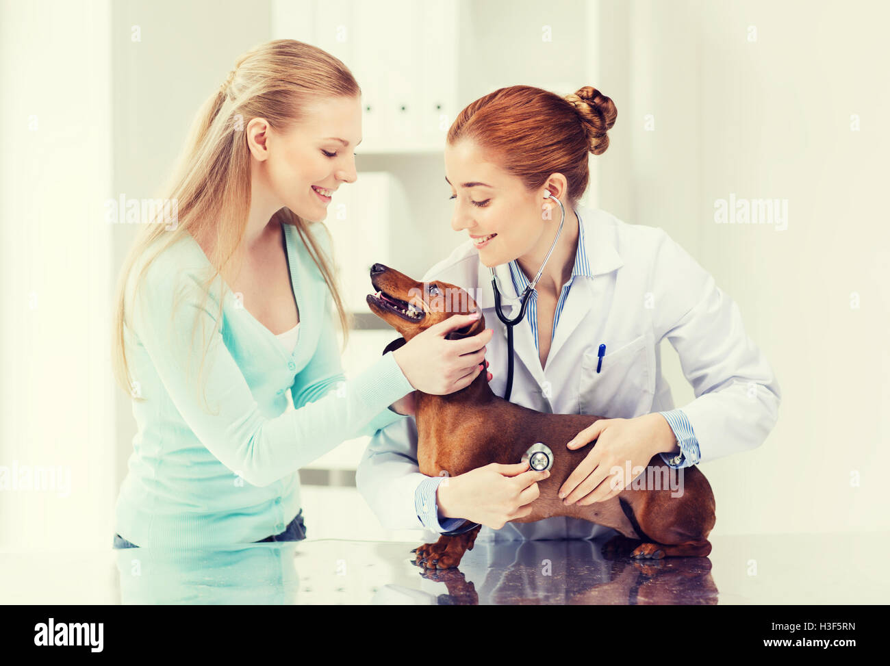 happy woman with dog and doctor at vet clinic - Stock Image