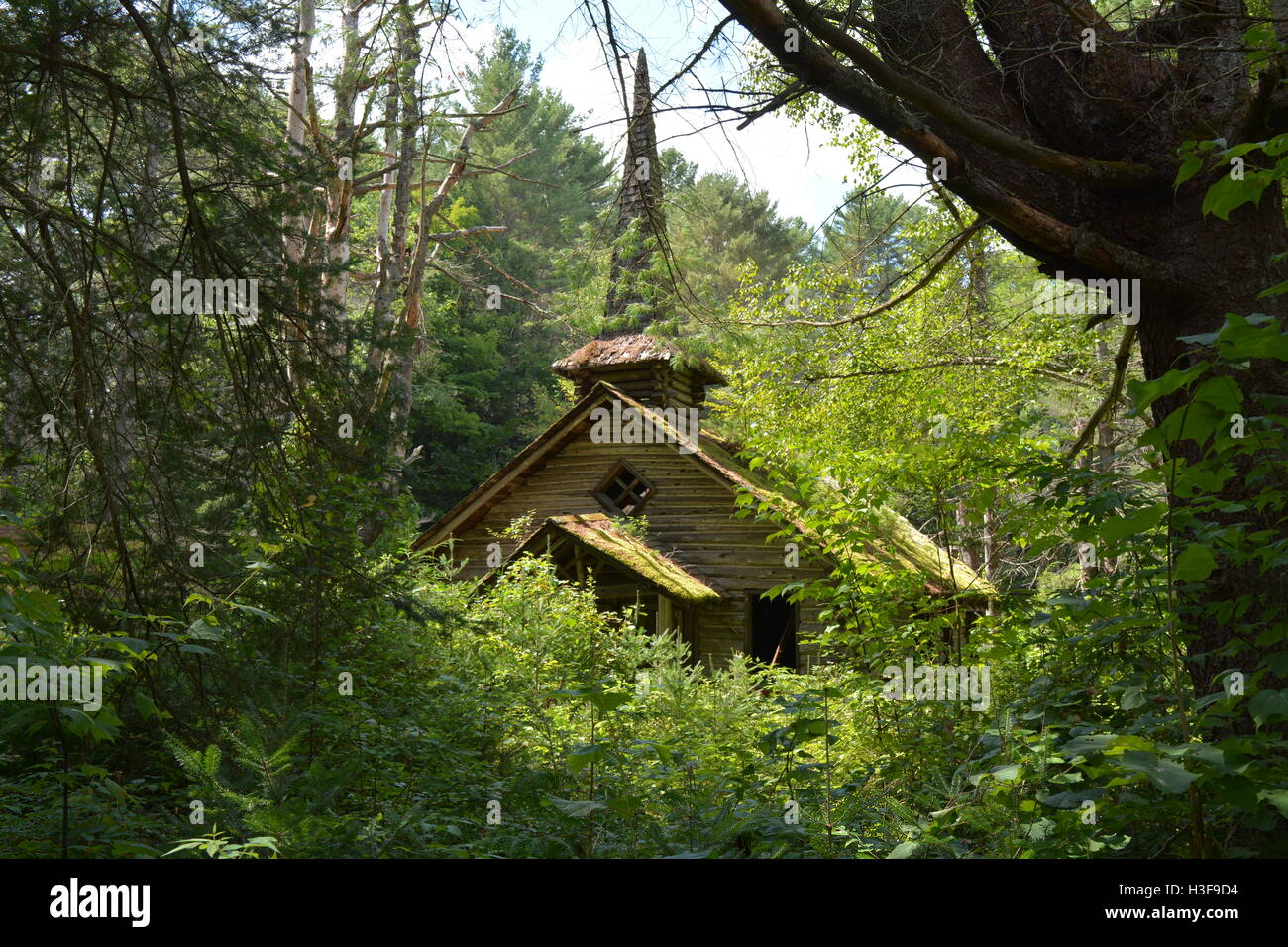Abandoned Wooden Theme Park Church In The Woods Stock Photo Alamy