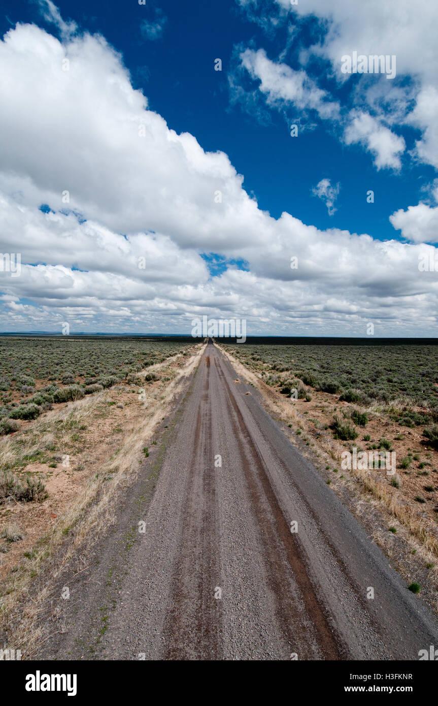 Desert road traversing sagebrush habitat (the sagebrush sea) in the Catlow Valley in southeastern Oregon - Stock Image