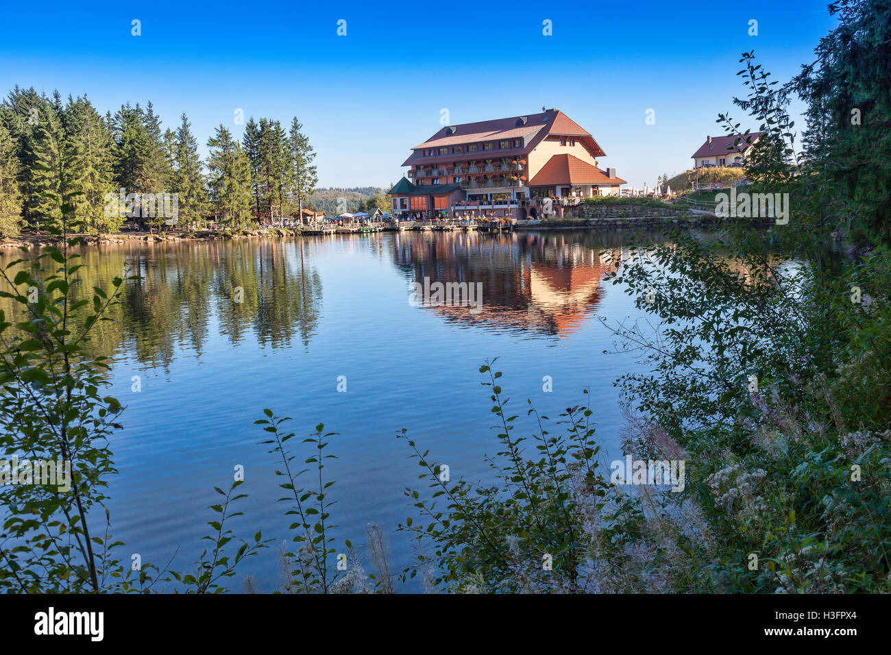 View at forest and a Hotel at lake Mummelsee in Southern Germany Black Forest, Baden-Wuerttemberg, Germany, Europe - Stock Image