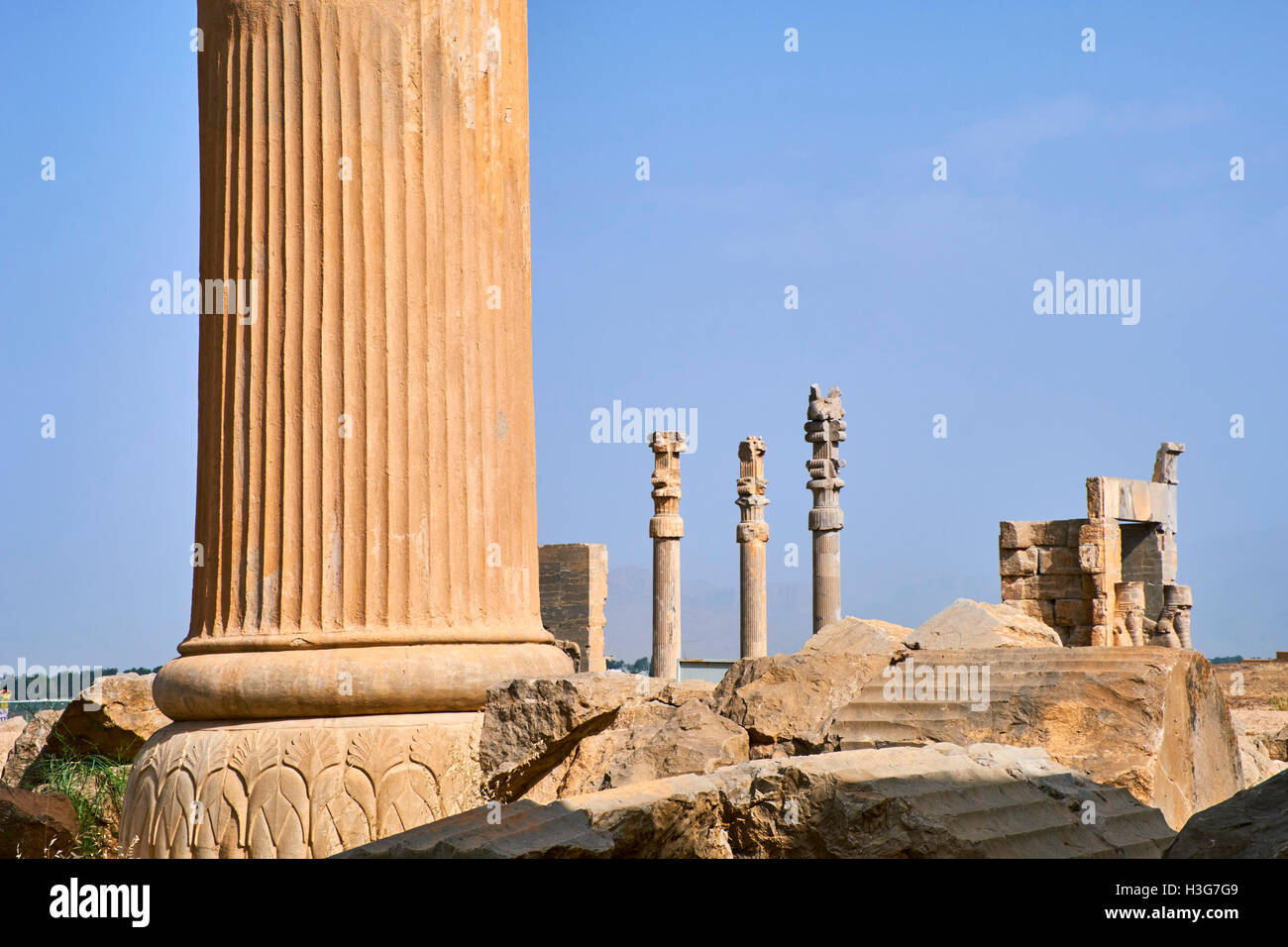 Iran, Fars Province, Persepolis, World Heritage of the UNESCO, pillars of the Apadane palace - Stock Image