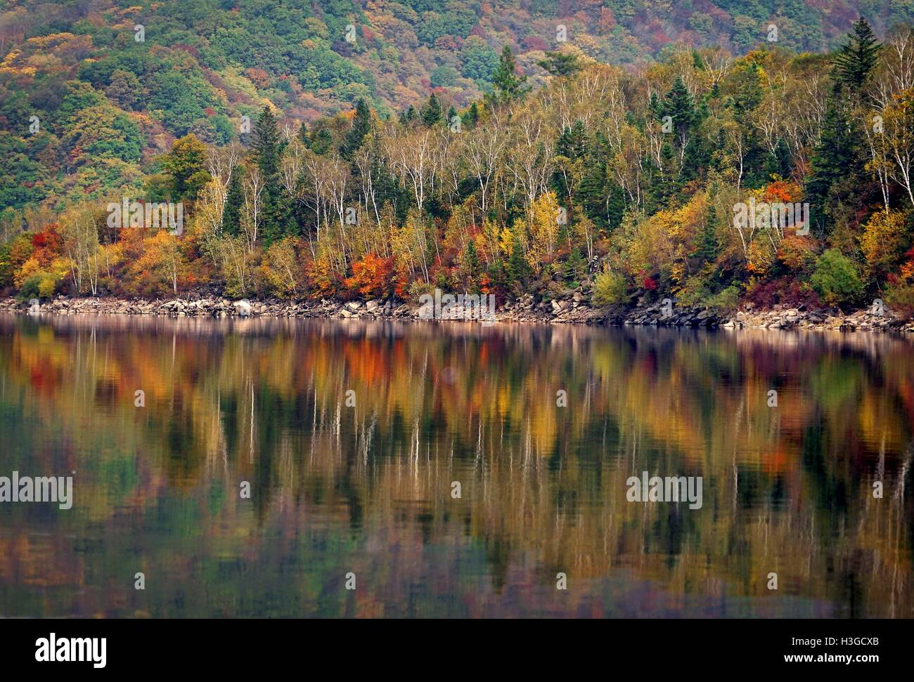 Beijing, China. 26th Sep, 2016. Photo taken on Sept. 26, 2016 shows the autumn scenery in Liangjiang Township of - Stock Image