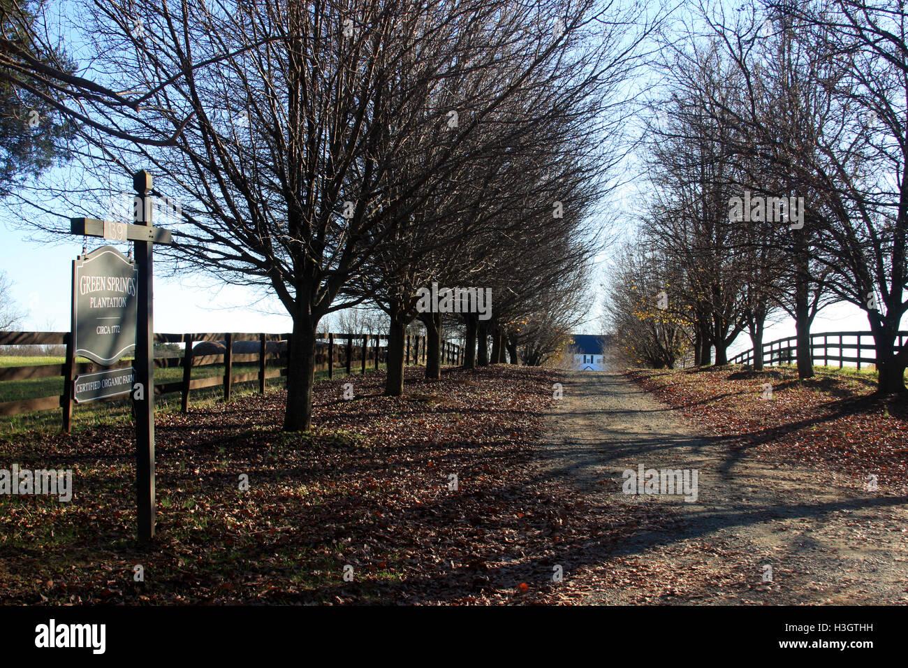 Green Springs Plantation, circa 1771, historic place in Albermarle County, Virginia - Stock Image