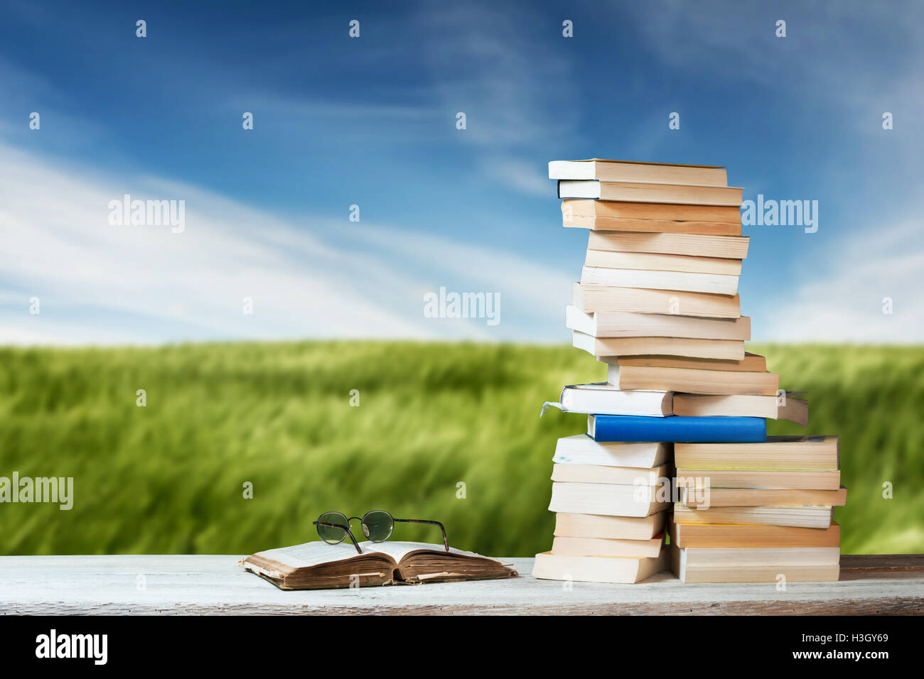 Stack of Travel Guides before a Meadow - Stock Image