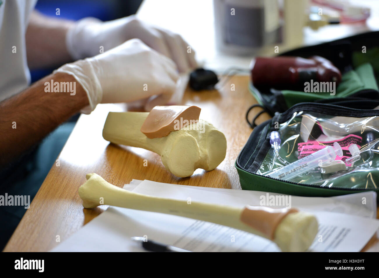Medical trainees practicing intraosseous techniques on replica bones.. - Stock Image