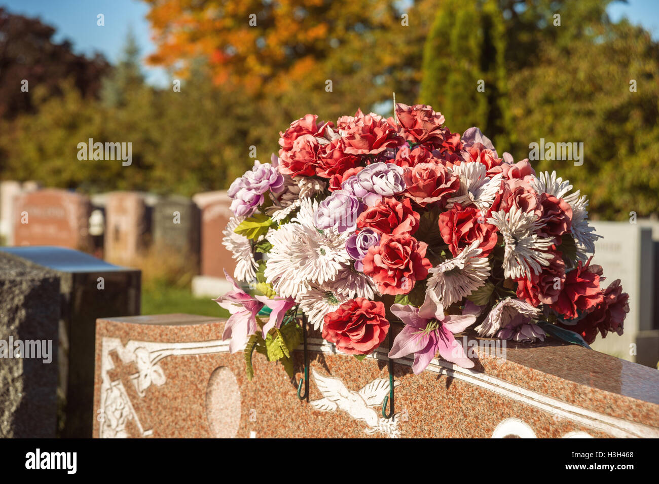 What are the flowers in the cemetery 28