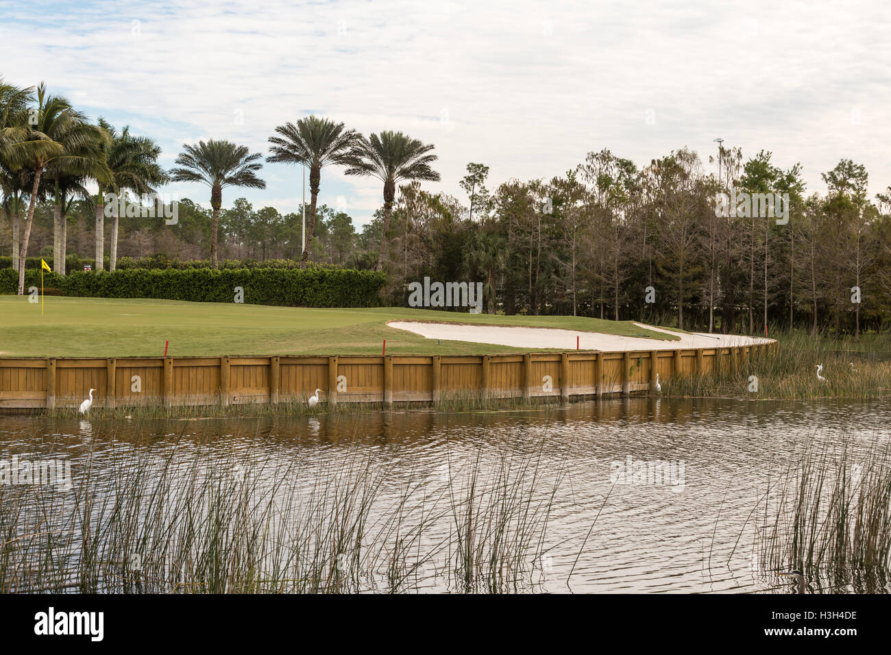 Florida Golf Course Stock Photos & Florida Golf Course Stock Images ...