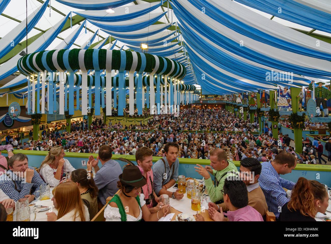 München, Munich: Oktoberfest beer festival: Ochsenbraterei tent, guests, Oberbayern, Upper Bavaria, Bayern, - Stock Image