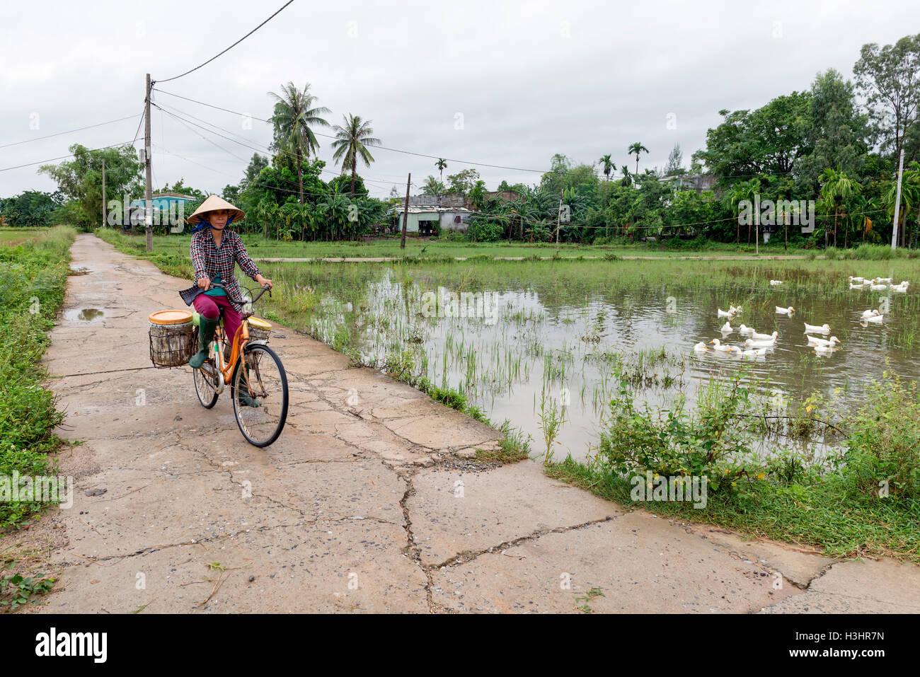 Rural scene in Vietnam - Stock Image