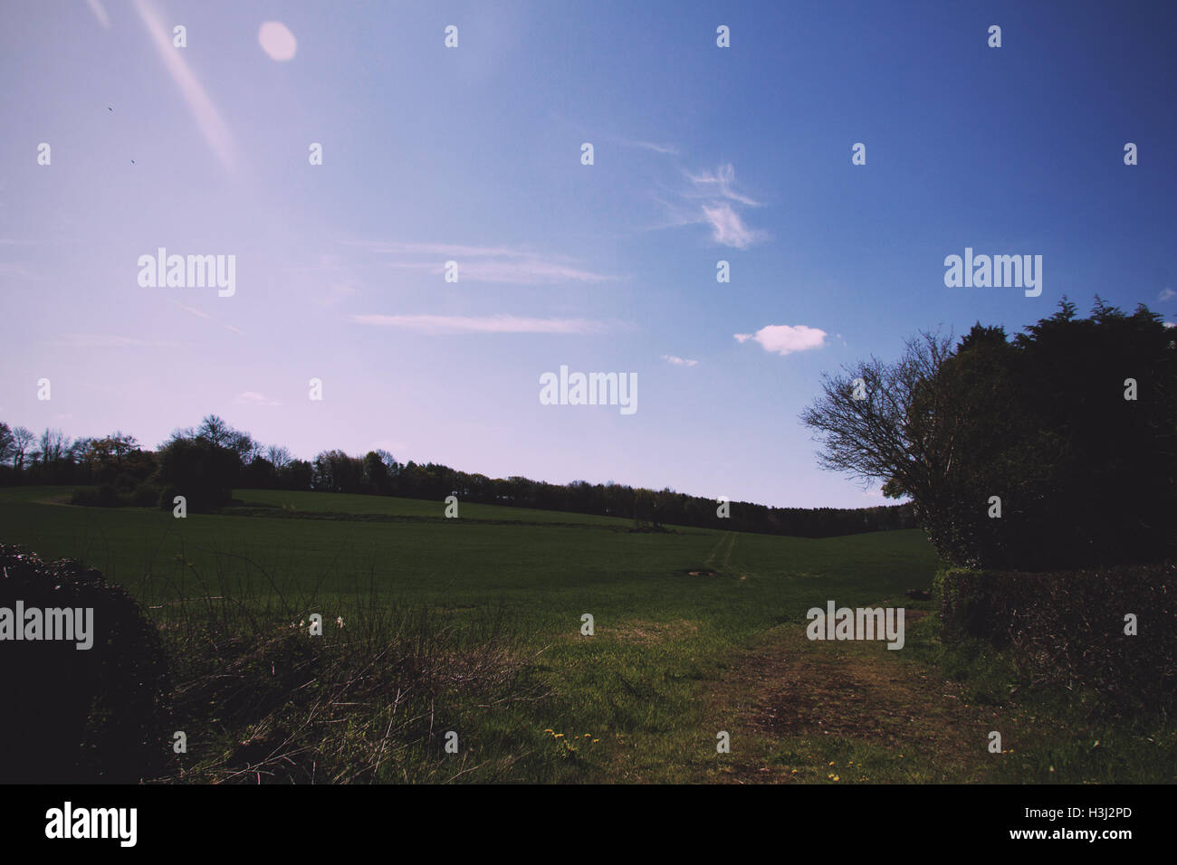 Blue sky over the countryside in the Chilterns Vintage Retro Filter. - Stock Image
