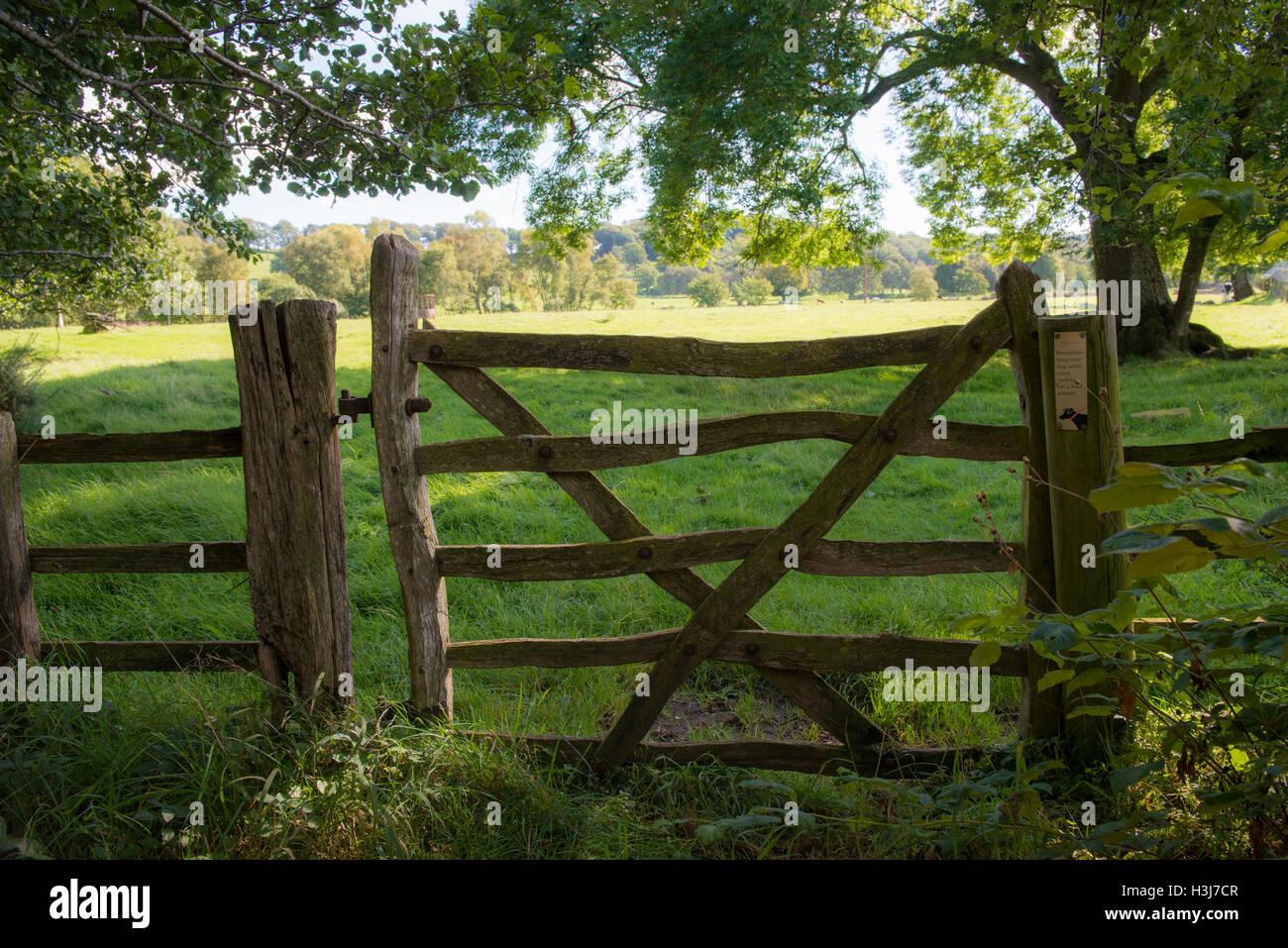 Old crooked wooden gate opening on to pasture near Lambley, Northumberland, UK Stock Photo