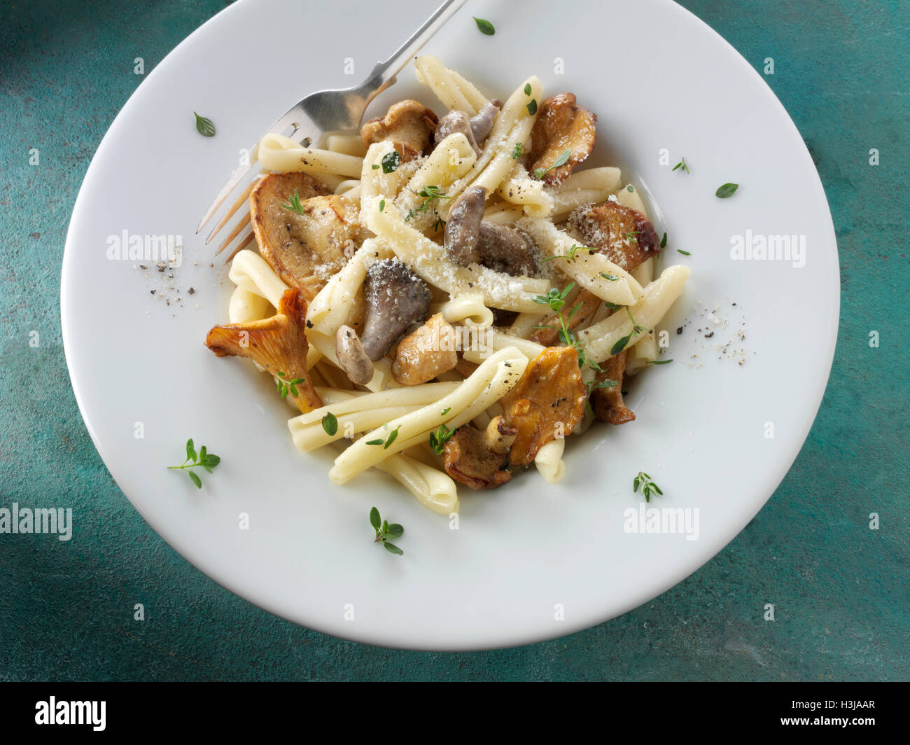 Wiild  chanterelle or girolle, Pied de Mouton Mushrooms  or hedgehog, Pied Bleu or blue foot musrooms with pasta - Stock Image