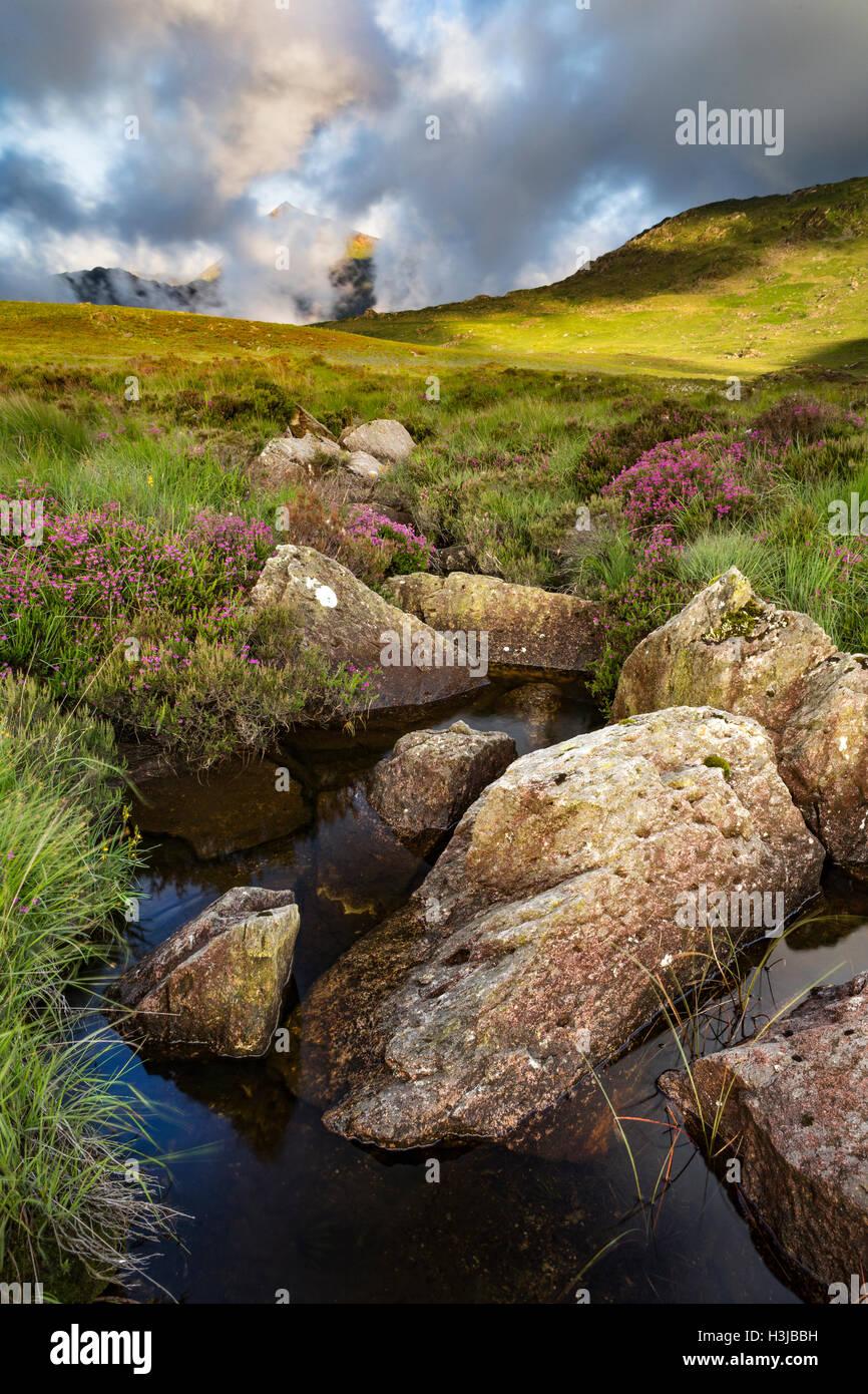 Nant Gwryd flows around boulders from Llyn Cwmffynnon leading into Dyffryn Mymbyr. Stock Photo