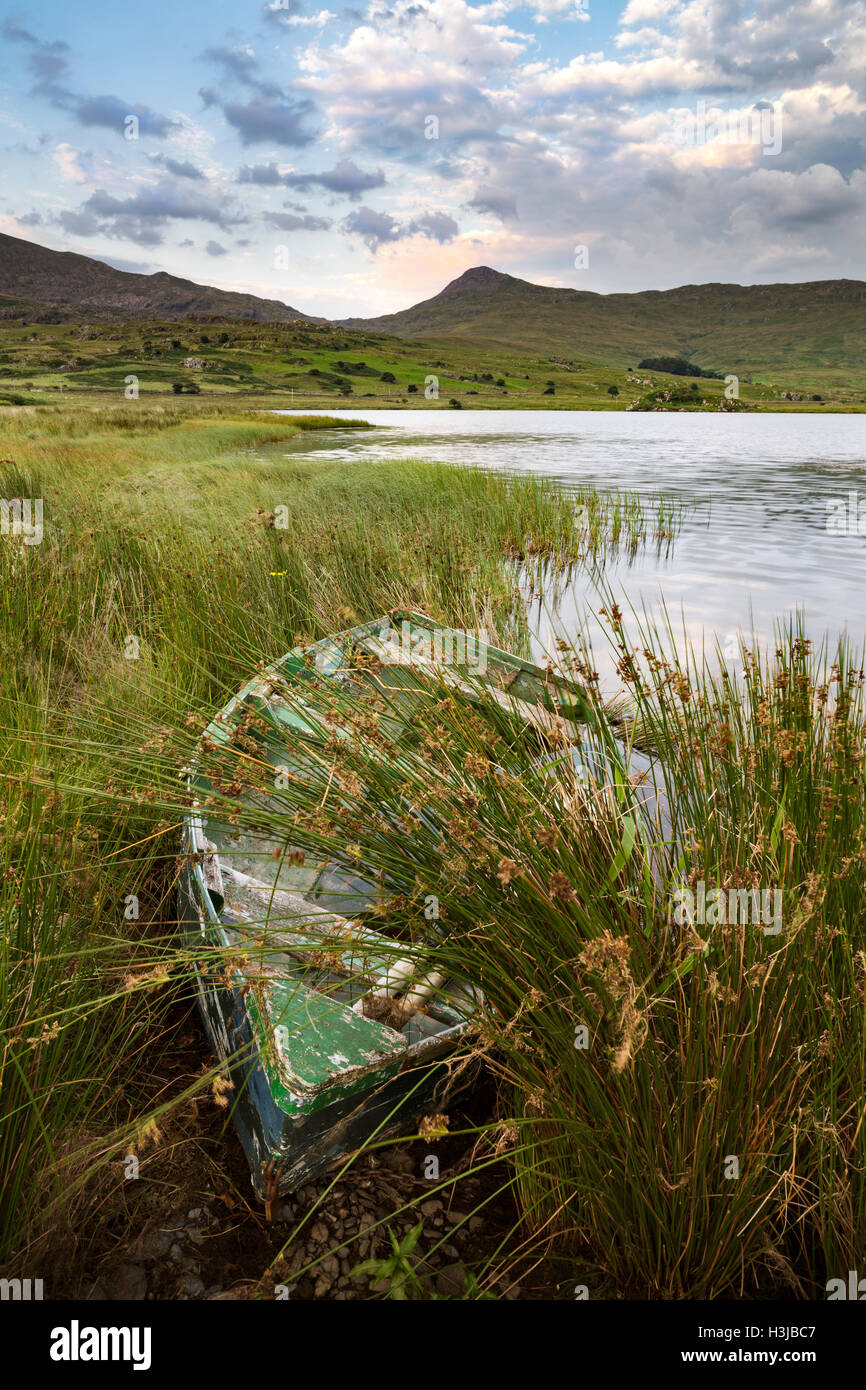 A rowing boats are moored up on the shore of Llyn y Gader, Snowdonia. Stock Photo
