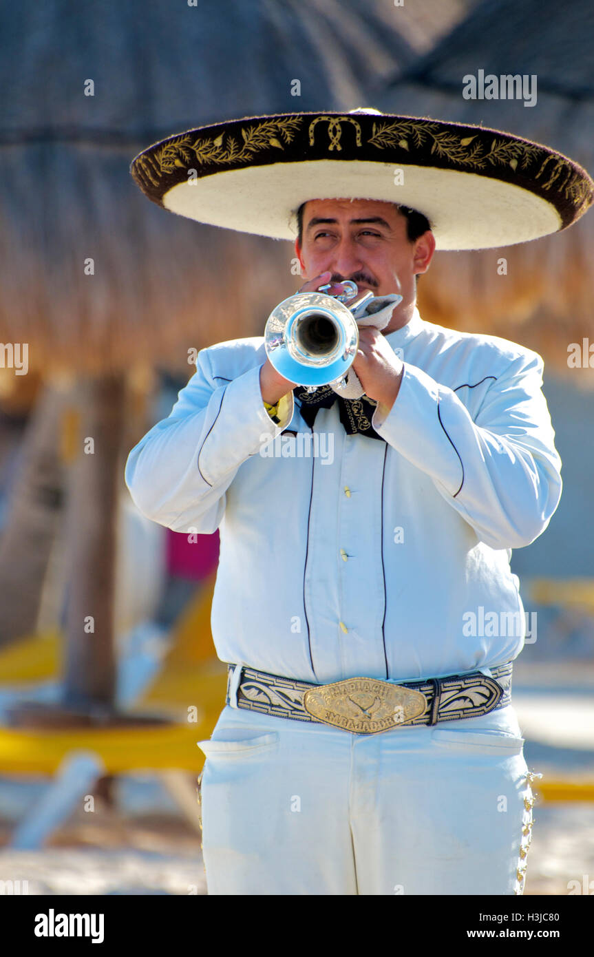 Mariachi Trumpet Player Performs on Sunny Beach during Wedding Stock ...