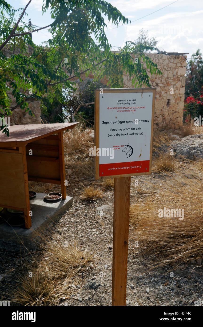 Halki cat feeding station, near Rhodes, Dodecanese Islands, Greece. - Stock Image
