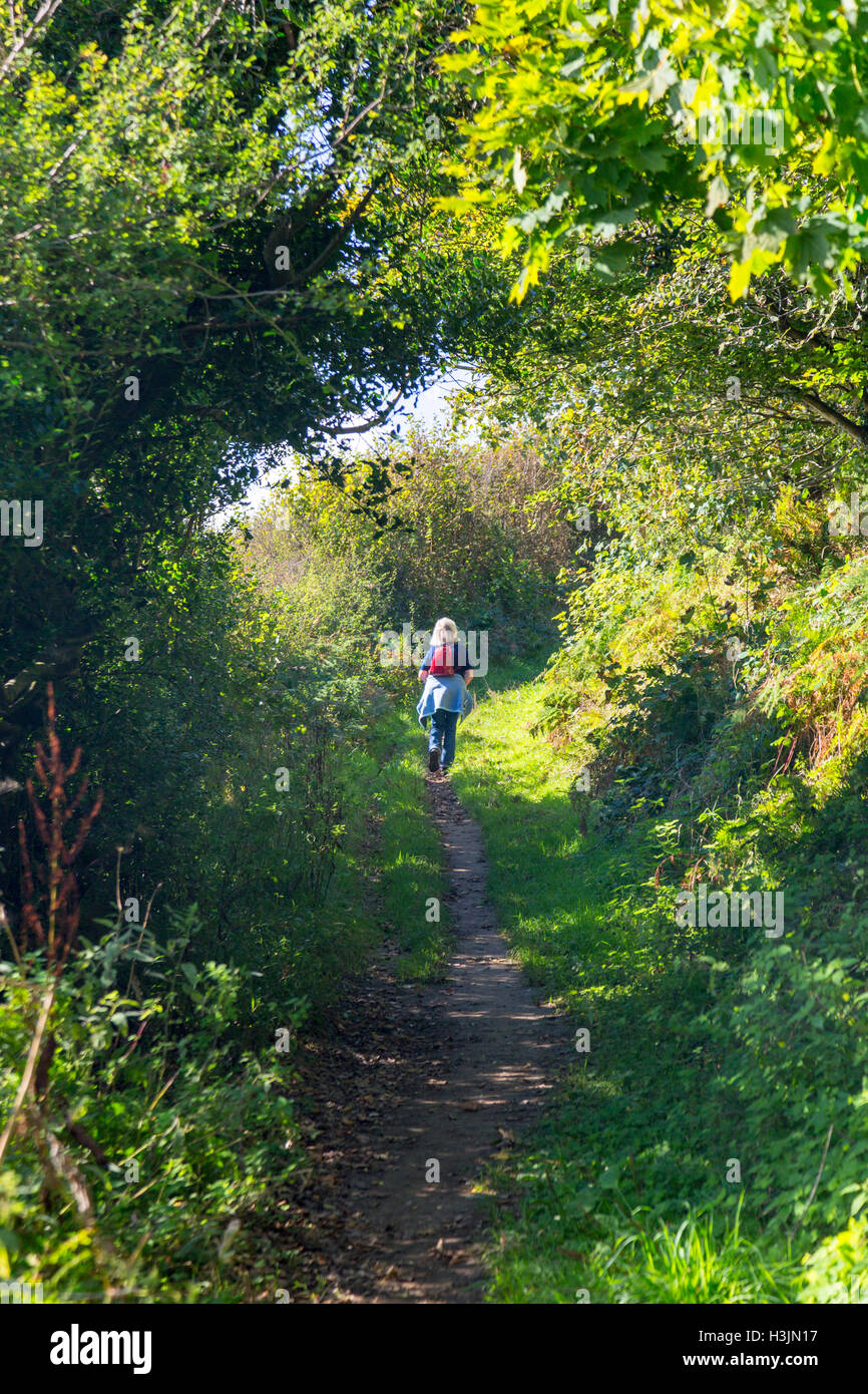 The footpath to Golden Cap at the edge of Langdon Woods above Seatown, Dorset, England, UK - Stock Image