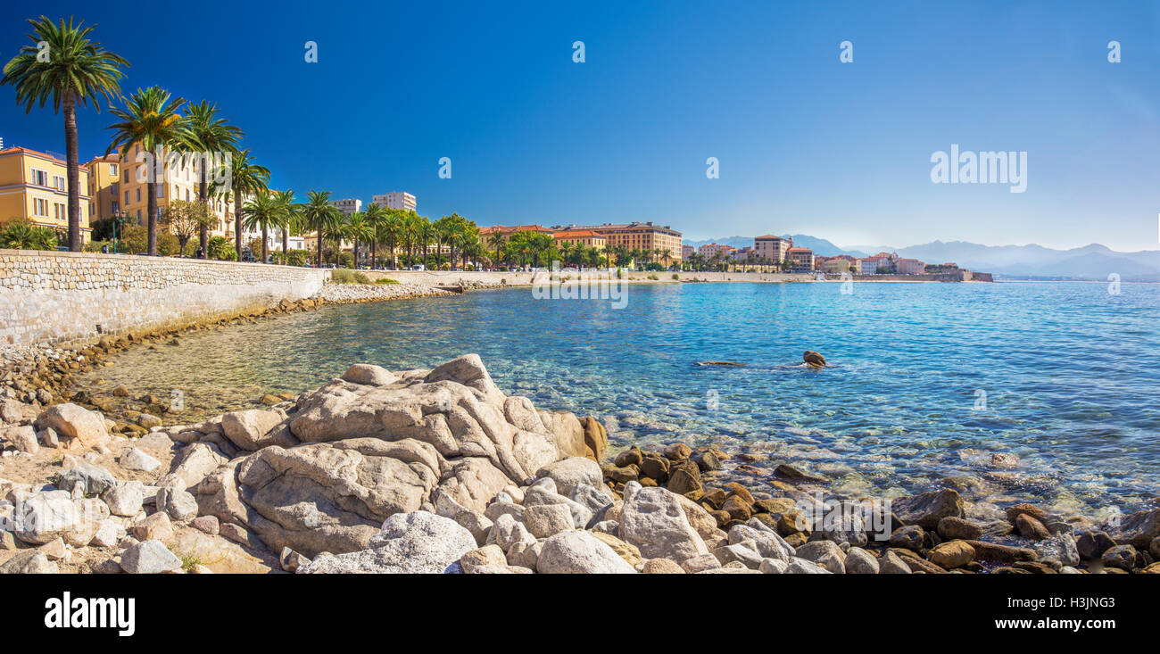 Ajaccio old city center coastal cityscape with palm trees and typical old houses, Corsica, France, Europe. - Stock Image