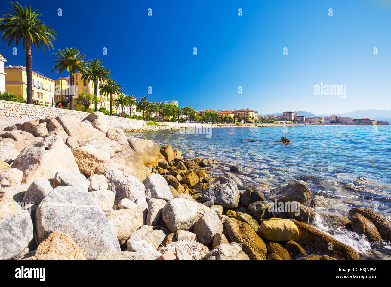 Ajaccio old city center coastal cityscape with palm trees and typical old houses, Corsica, France, Europe. Stock Photo