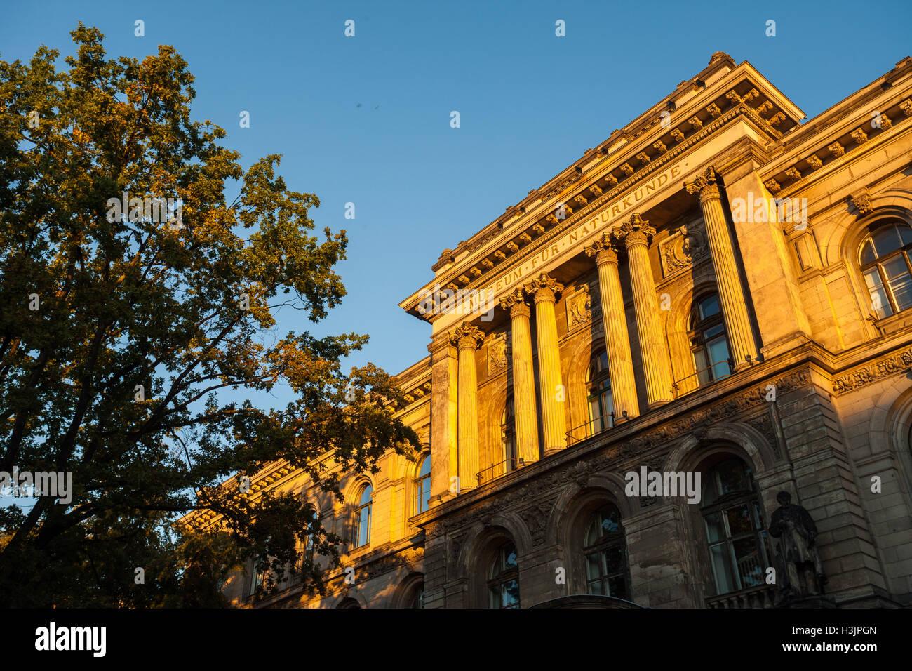 Berlin's Naturkundemuseum (Museum of Natural History) Stock Photo