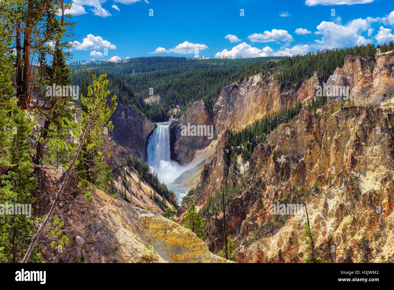 Yellowstone National Park, Lower Falls, Wyoming - United States of America - Stock Image