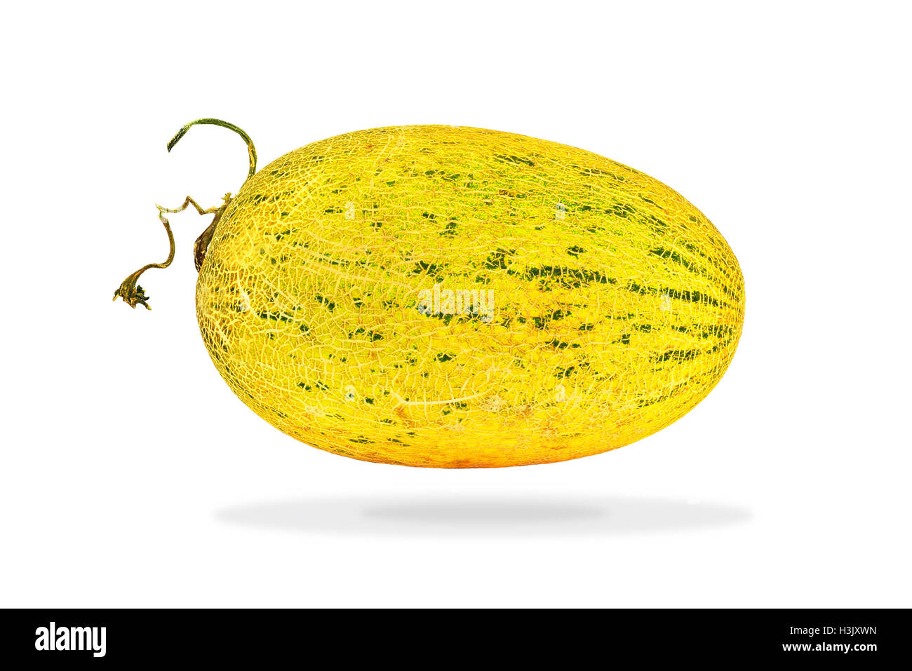 Tibet melon on white background - Stock Image