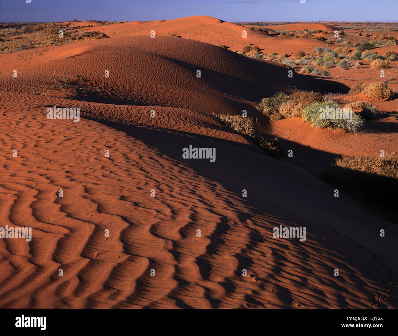 Desert sand dunes, - Stock Image