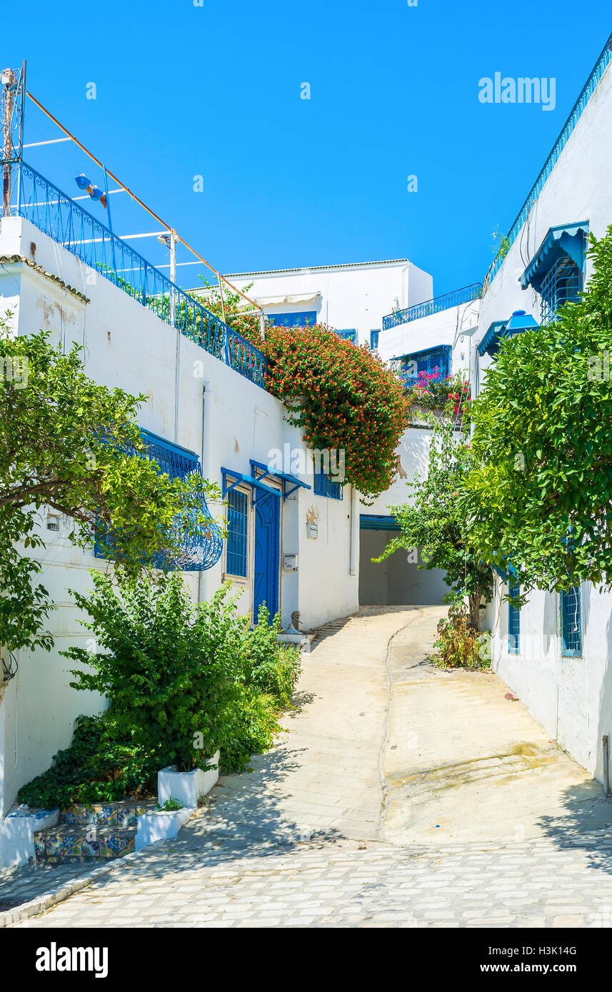 Sidi Bou Said is the popular tourist village located on the hilly area not far from Tunis, Tunisia. - Stock Image