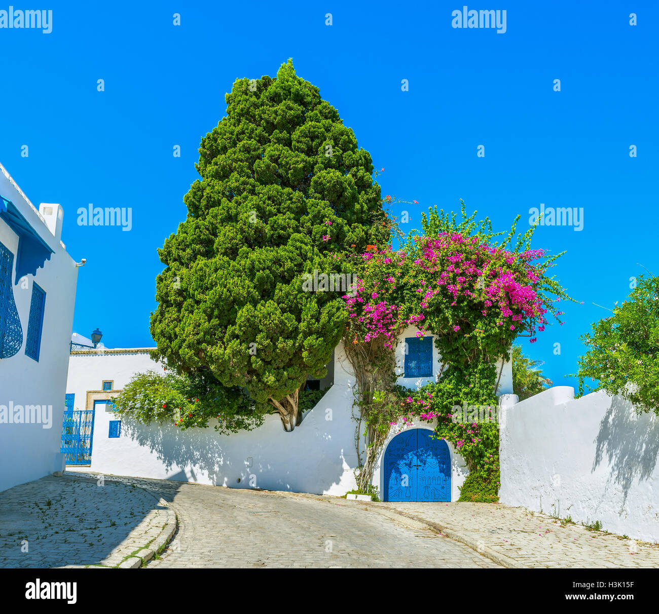 The village boasts perfectly landscaped gardens with many bright flowers and shady trees, Sidi Bou Said, Tunisia. - Stock Image