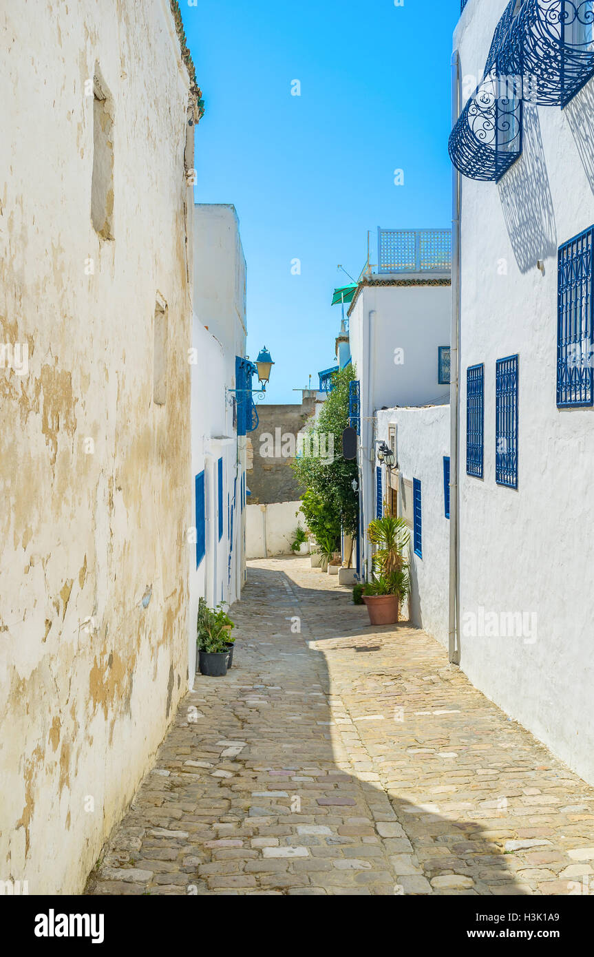 Sidi Bou Said consists of the narrow hilly streets with the white houses and lovely gardens, Tunisia. - Stock Image