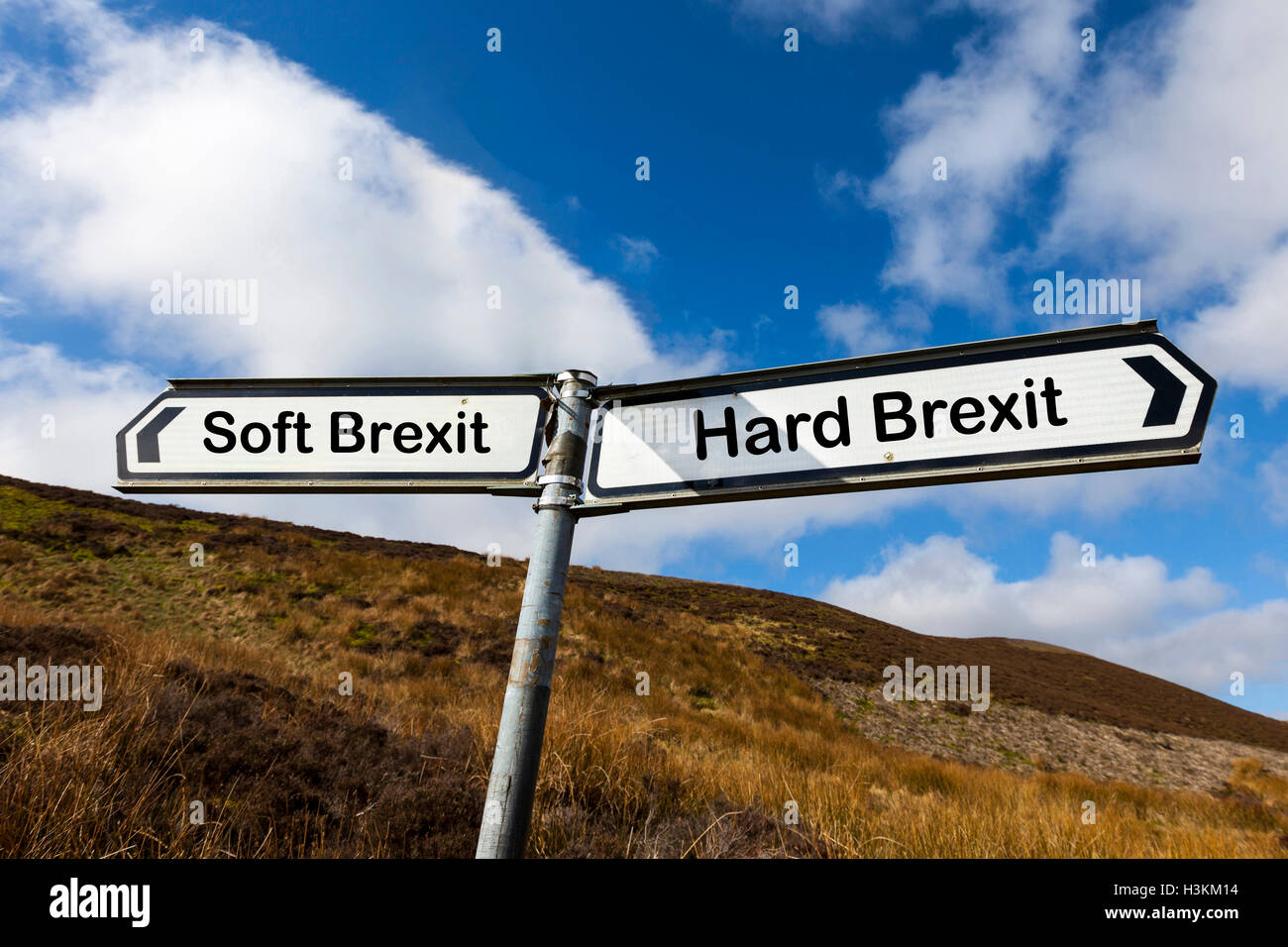 Soft brexit hard brexit GB UK England Article 50 European leaving Europe jurisdiction ruling options choice choices - Stock Image