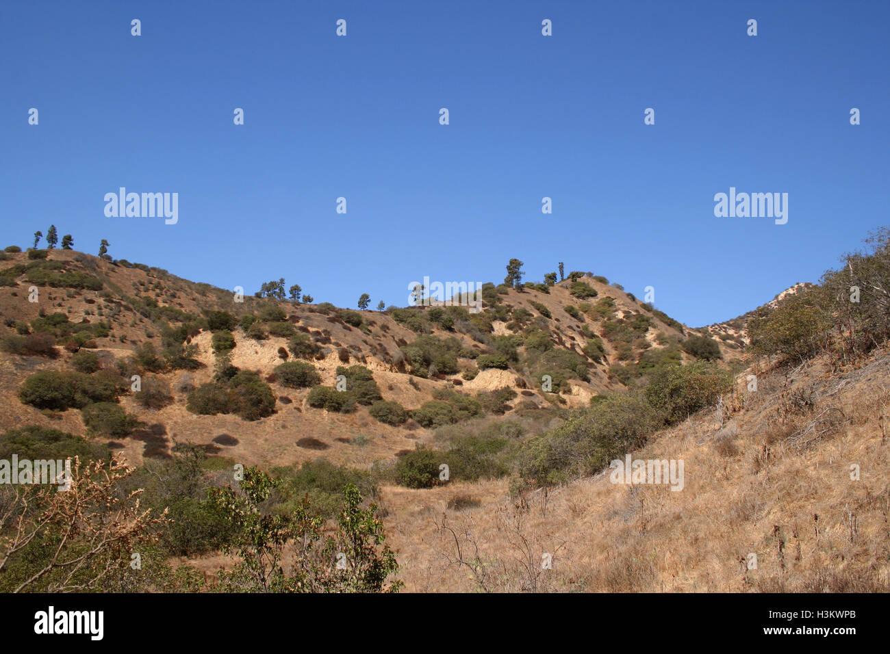 Desert Hills with Shrubs and Brush. - Stock Image