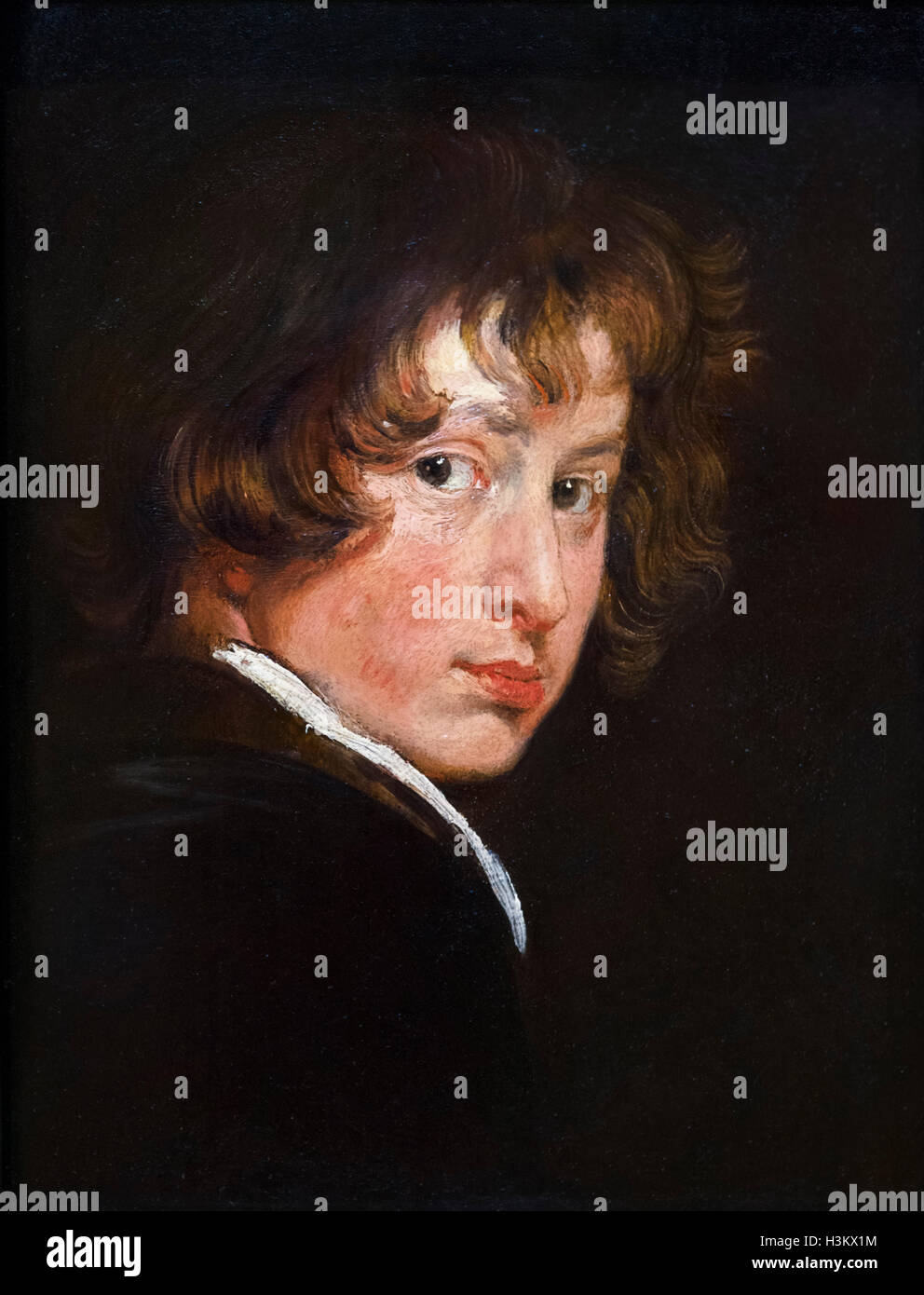 The Flemish artist, Sir Anthony van Dyck (1599 -1641), self-portrait at the age of around 15, oil on wood, c.1614. - Stock Image