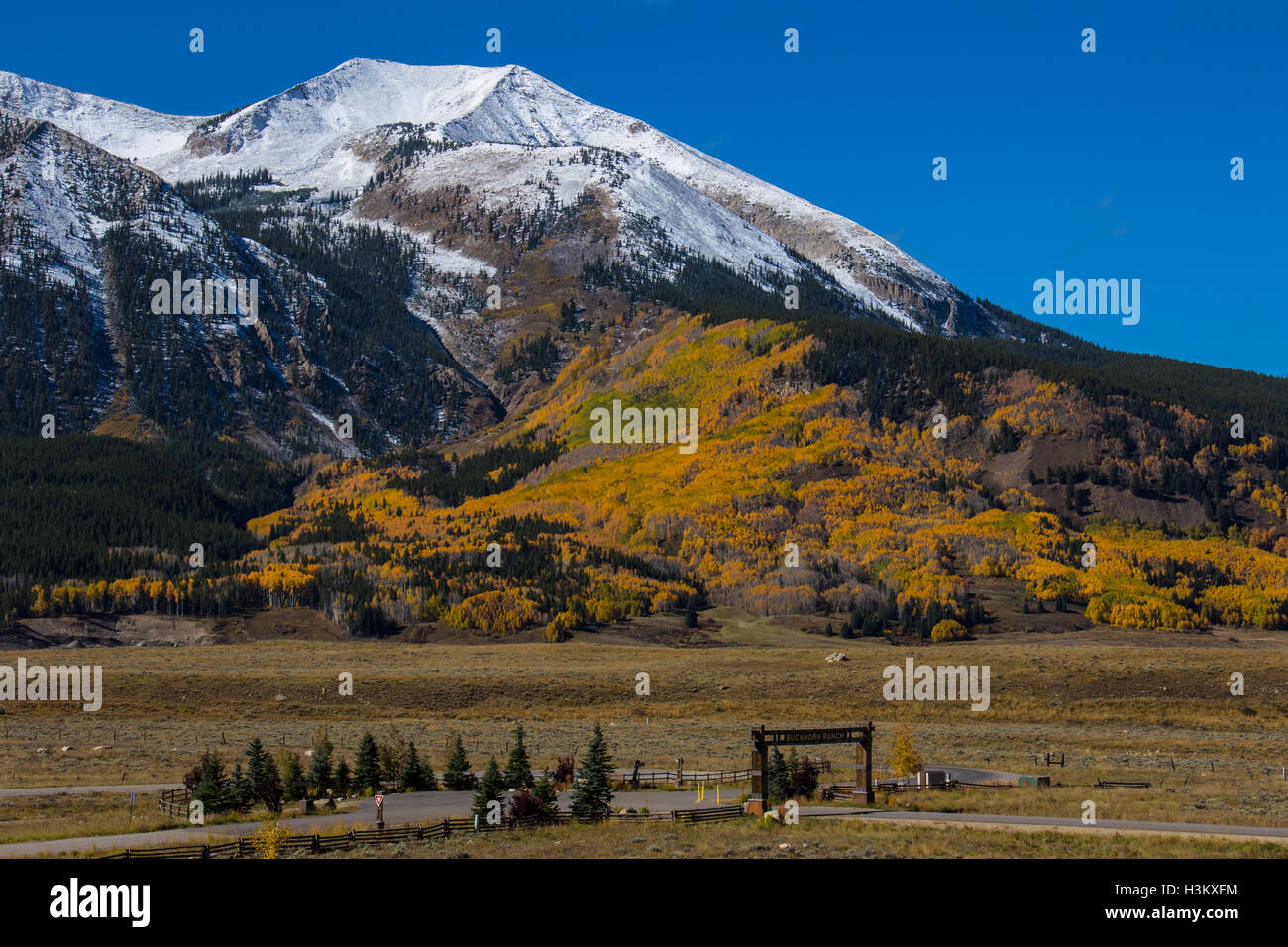 Fall Colors near Crested Butte - Stock Image