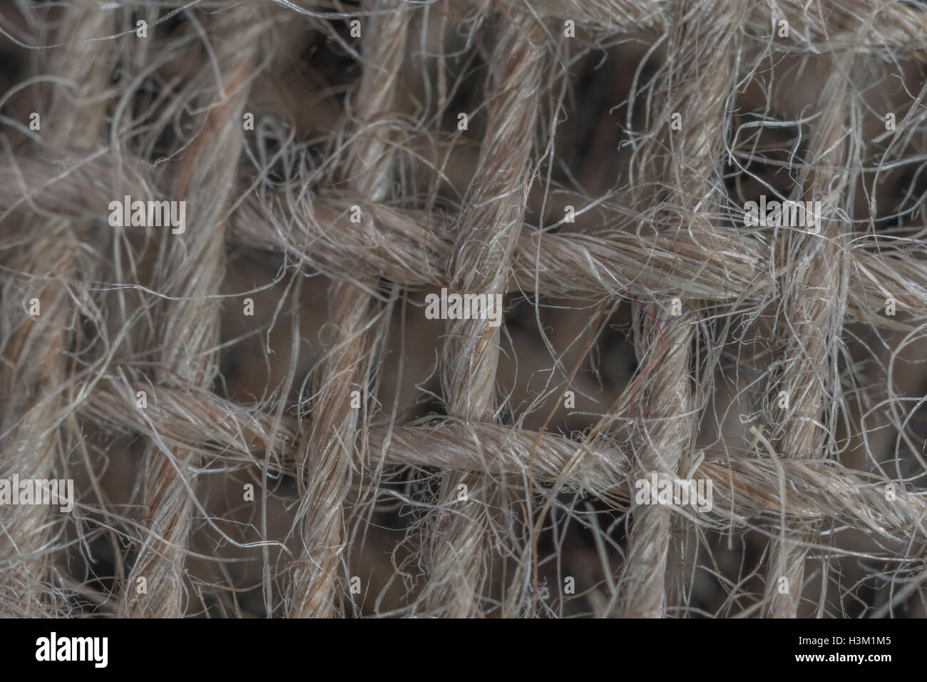 Macro-photo of natural fibre, jute-like, sacking material showing detail of the fine threads. - Stock Image