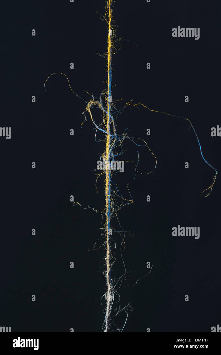 Piece of frayed natural fiber string against a dark background - visual metaphor for 'hanging on by a thread'. - Stock Image