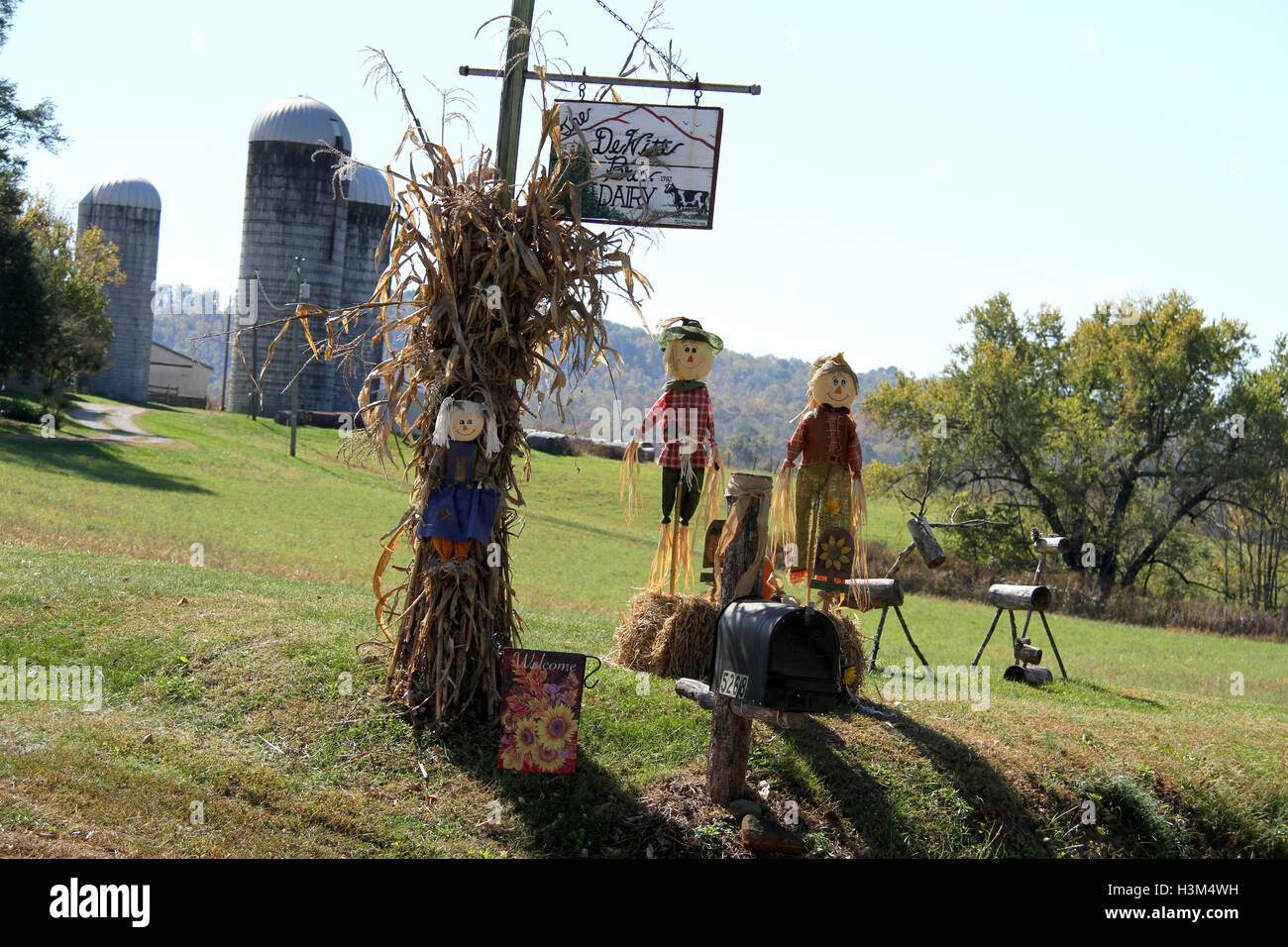 Outdoor Fall Decoration With Scarecrows Corn Stalks And Hay Stock