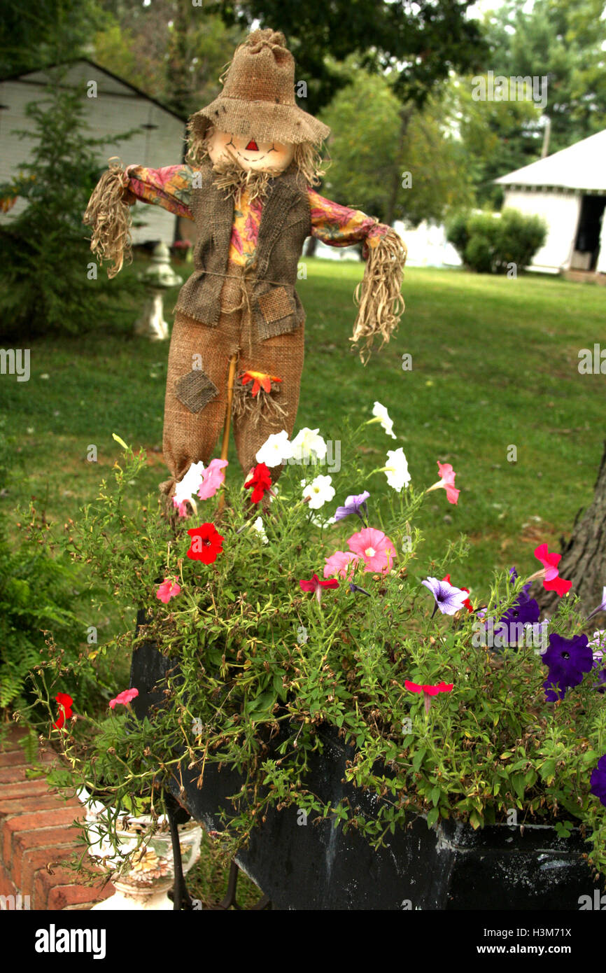Outdoor Fall Decoration With Scarecrow And Pumpkin Stock Photo