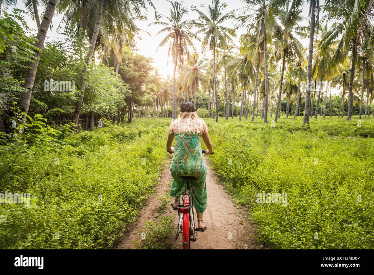 Rear view of young woman cycling in palm tree forest, Gili Meno, Lombok, Indonesia - Stock Image