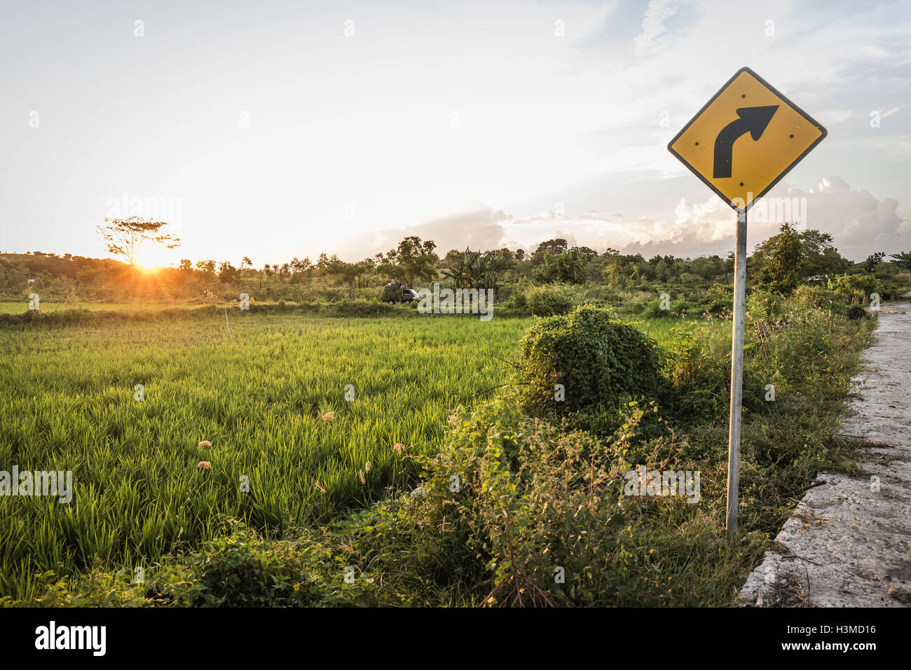 Yellow arrow sign and green field landscape at sunset, Lombok, Indonesia - Stock Image