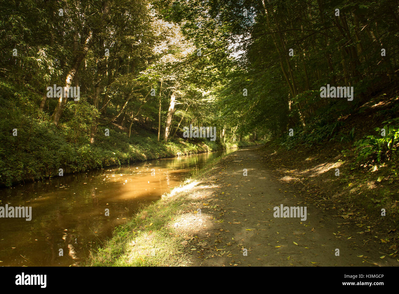Llangollen Canal at Chirk on the England Wales Border trees reflection in canal Stock Photo