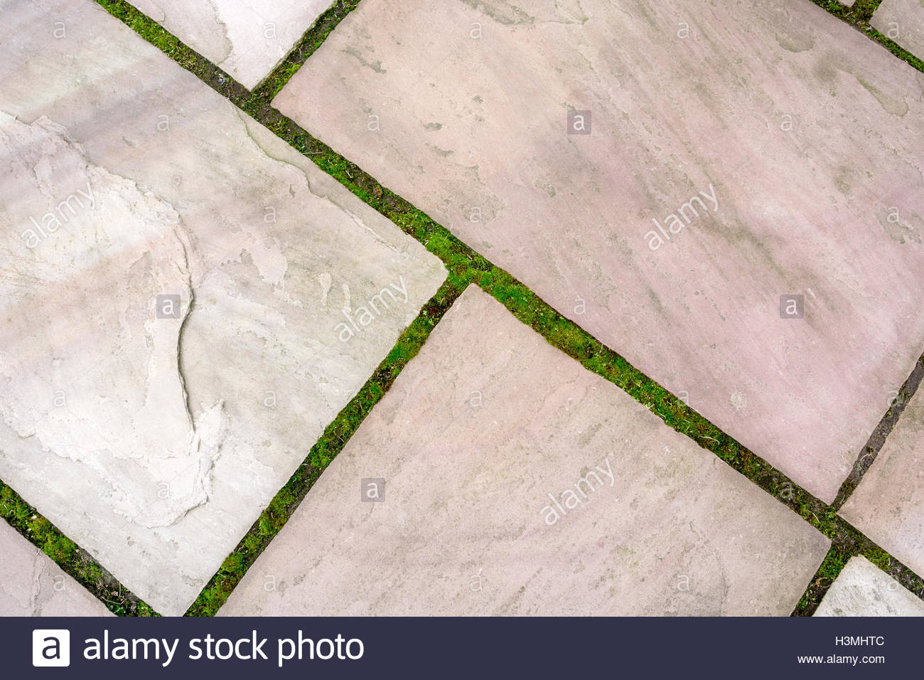 Patio with moss and weeds growing in gaps - Stock Image