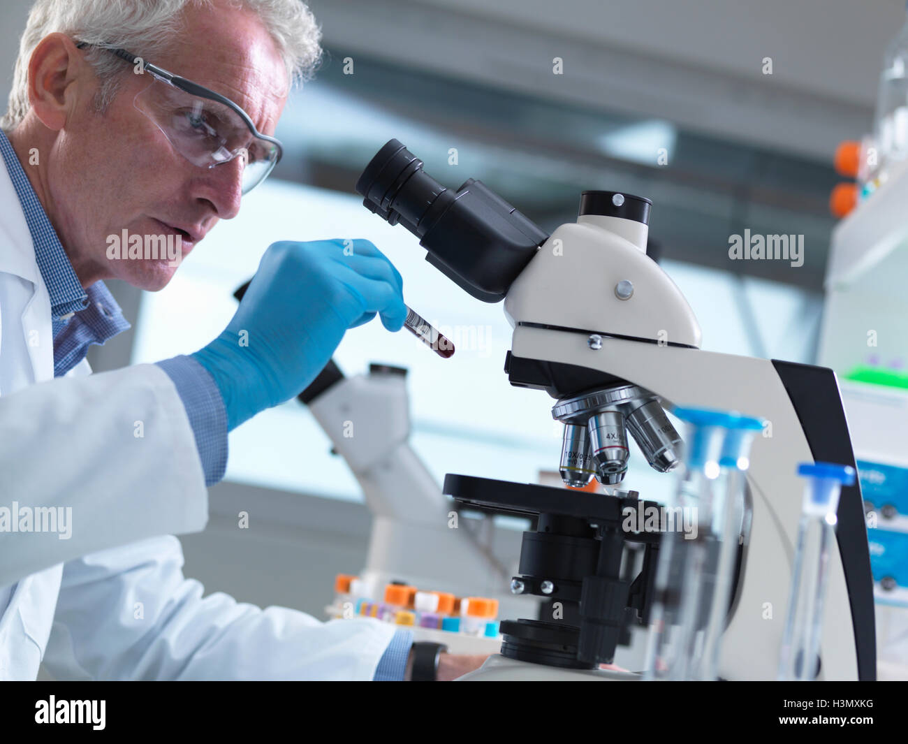 Scientist reading sample information on a blood sample ready to view under a microscope in laboratory for medical - Stock Image
