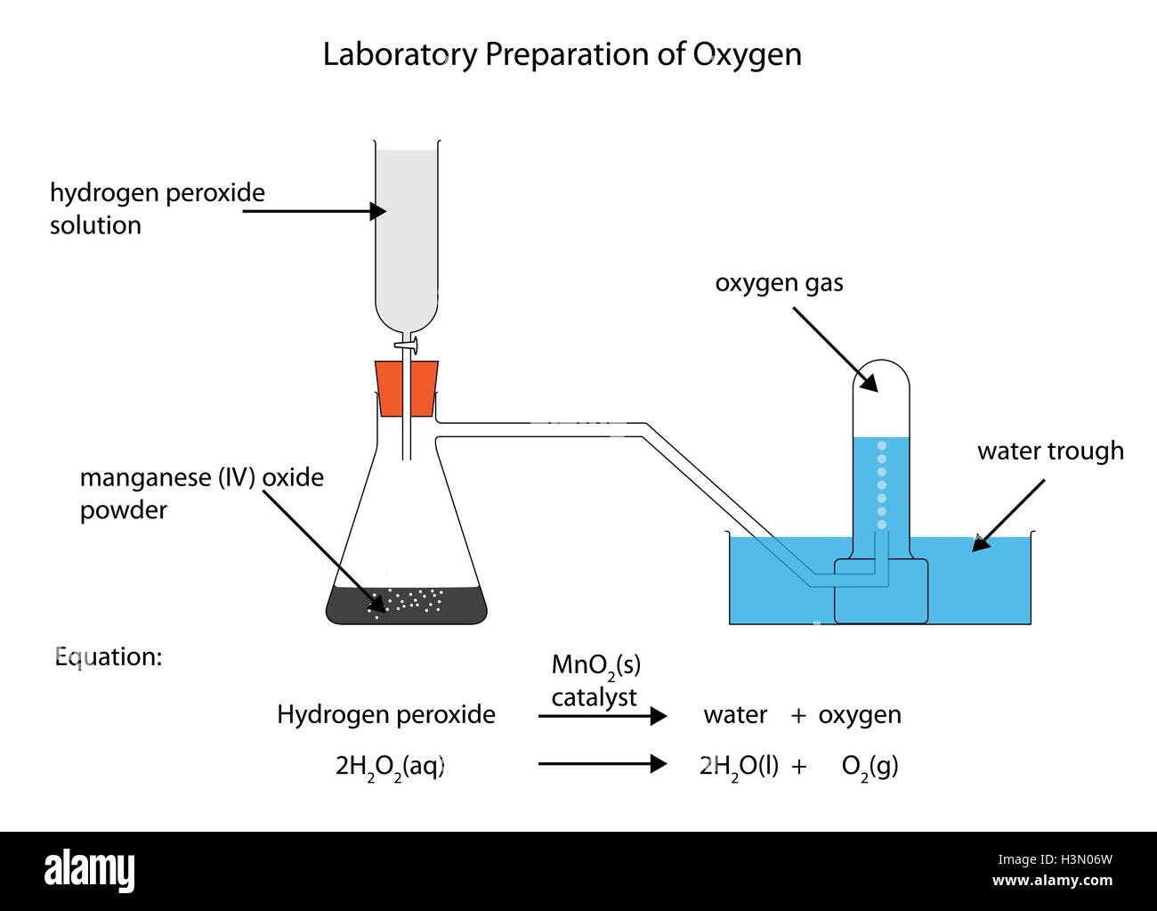 full labelled diagram of the laboratory preparation of oxygen from Ij Diagram full labelled diagram of the laboratory preparation of oxygen from hydrogen peroxide and manganese iv oxide