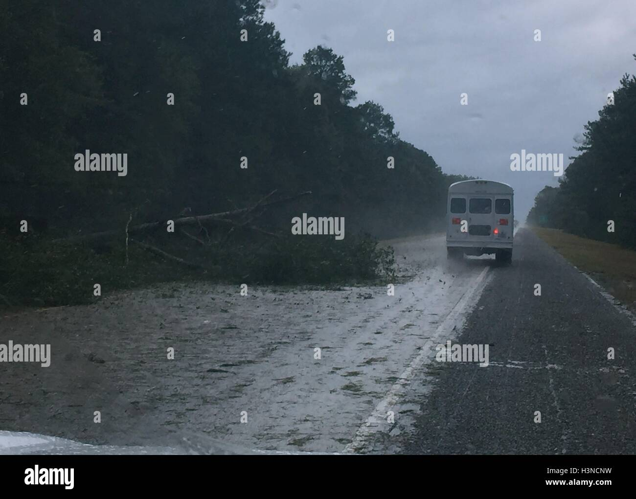 United States. 08 Oct, 2016. A tree blocks passage on Interstate 16 as Georgia National Guard members approach Savannah, - Stock Image