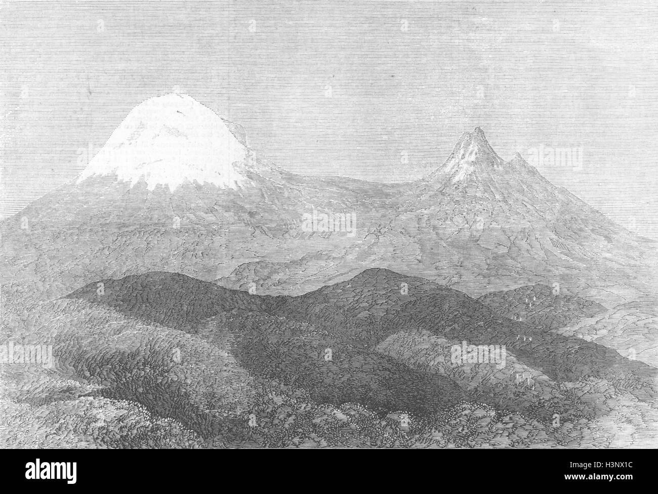 KENYA Peak of Kilimanjaro, snow-clad mountain 1872. Illustrated London News - Stock Image