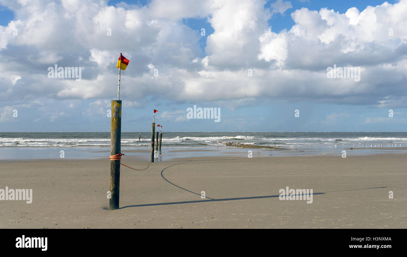 Flags fluttering on a line of poles leading to the edge of the surf on a tropical beach with dramatic white cumulus - Stock Image