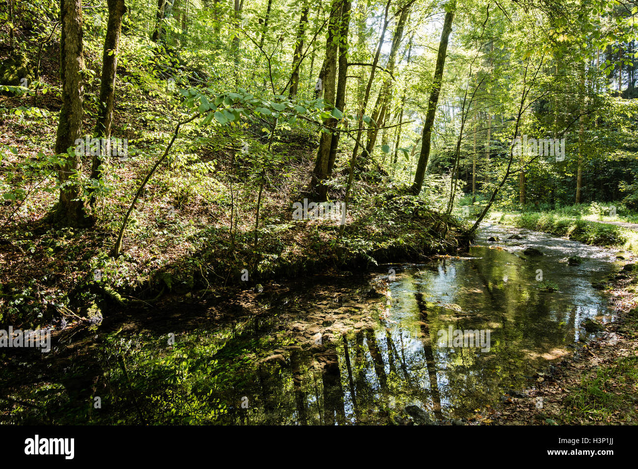 Beautiful landscape in Swabian Alb - Stock Image